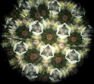 Kaleidoscope012
