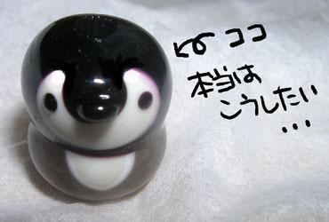 Tonbodama60